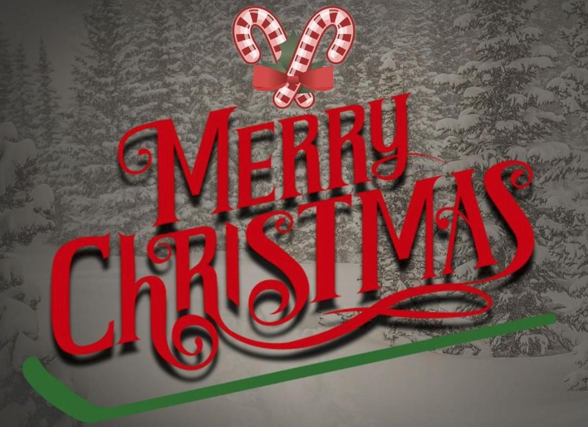 La Nhl Vous Souhaite Un Joyeux Noel Sport Business Mag